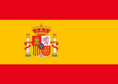 Espagnol adultes